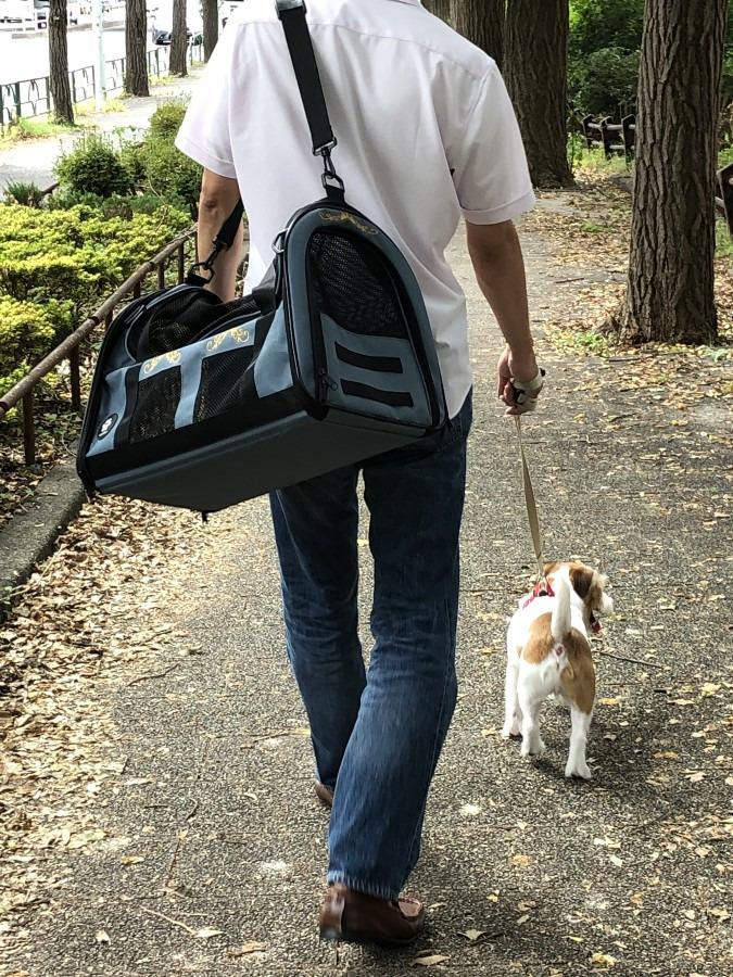 思いっきり遊んでも帰りは大丈夫。安心、軽量 理想のペットキャリーバッグ