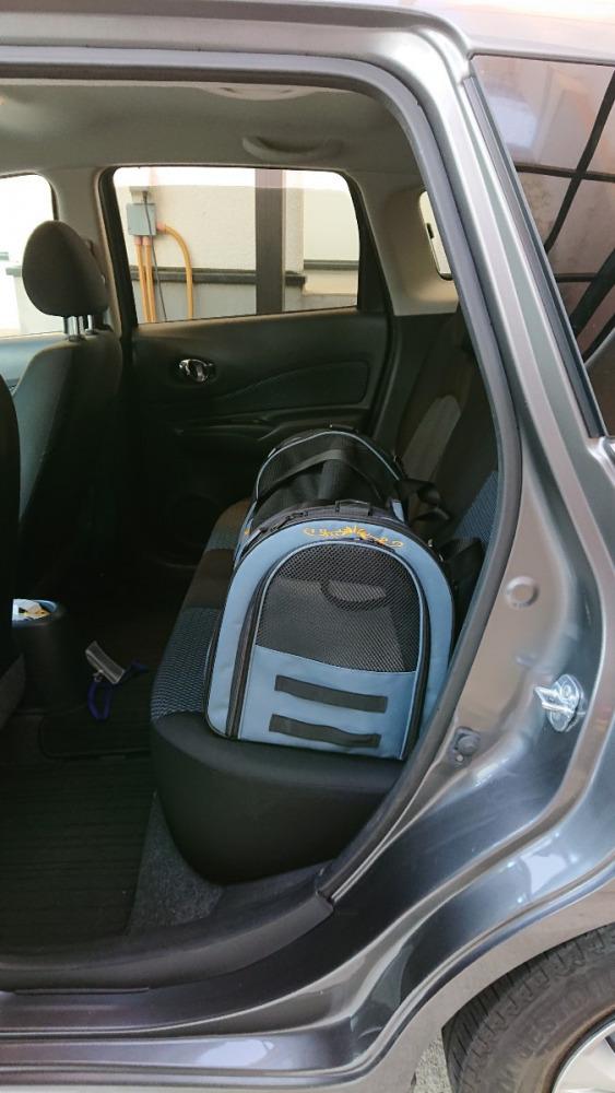 車で移動の場面が多いかな?後部座席ならこんな感じ。