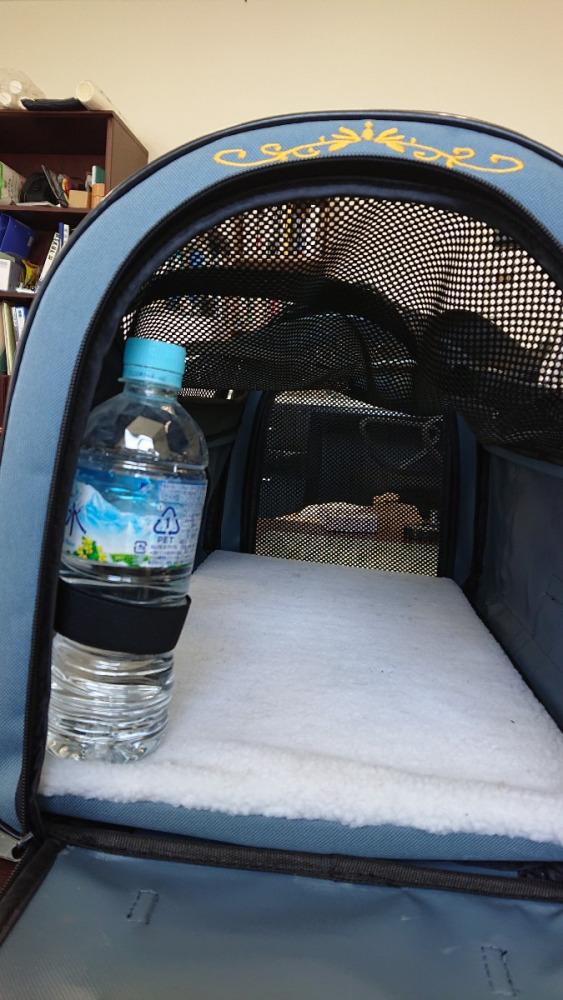 水分補給は大事。ボトルホルダー付いてます。